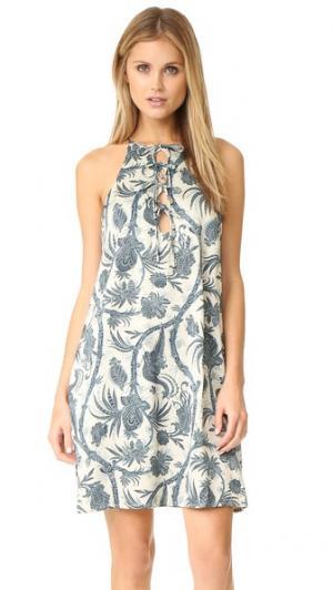 Свободное платье Adorn с завязками Zimmermann. Цвет: bird chintz