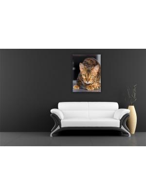Картина Бенгальский кот Сирень. Цвет: морская волна, серебристый