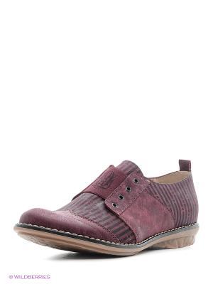 Ботинки BELWEST. Цвет: фиолетовый