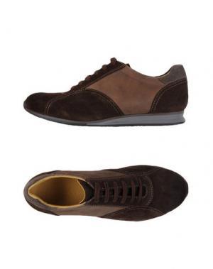Низкие кеды и кроссовки SPARCO. Цвет: темно-коричневый