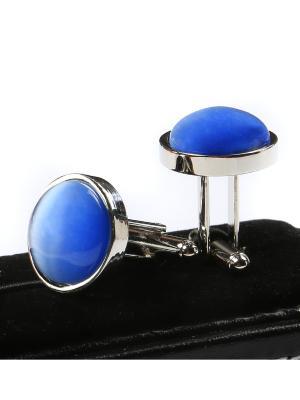 Запонки Franco Frego. Цвет: голубой