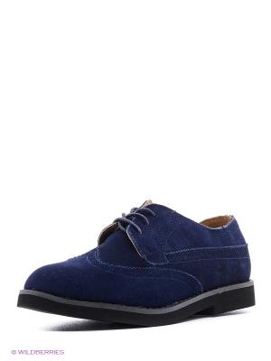 Туфли ACOOLA. Цвет: темно-синий