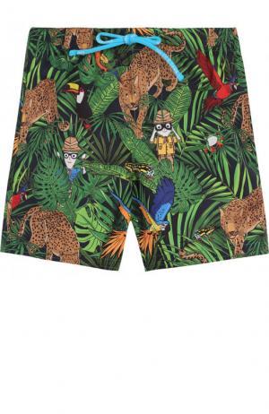 Плавки-шорты с принтом Dolce & Gabbana. Цвет: зеленый