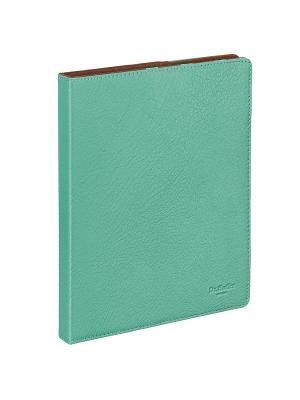 Чехол для iPad4/3/2 Dr. Koffer. Цвет: бирюзовый