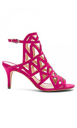 Туфли на каблуке prisintha Vince Camuto. Цвет: фуксия
