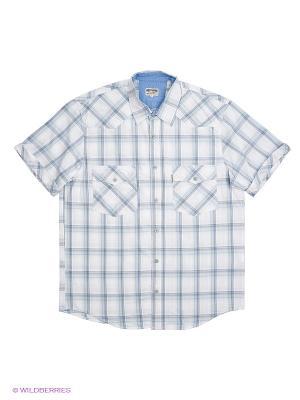 Рубашка Westrenger. Цвет: белый, голубой