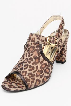 Туфли Mafra. Цвет: леопардовый
