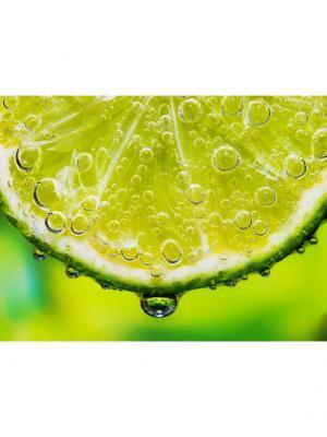 Картина лимон Ecoramka. Цвет: зеленый, салатовый, светло-зеленый
