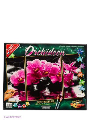 Триптих для раскрашивания Орхидеи Schipper. Цвет: розовый, темно-зеленый