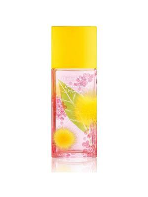 Green Tea Mimosa Туалетная вода 100 мл ELIZABETH ARDEN. Цвет: прозрачный