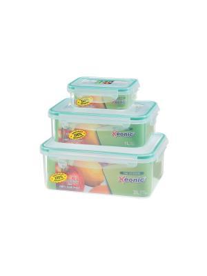Набор 3 - х квадратных контейнеров, XEONIC CO LTD. Цвет: зеленый, прозрачный