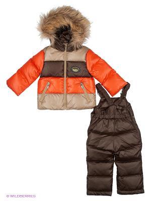 Комплект одежды Павлуша Аксарт. Цвет: коричневый