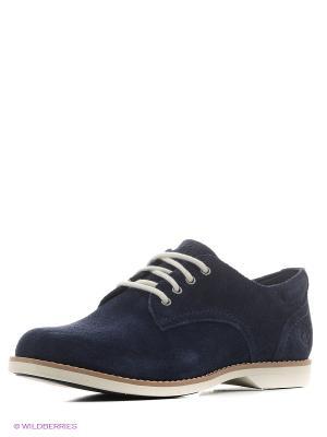 Ботинки TIMBERLAND. Цвет: синий, черный