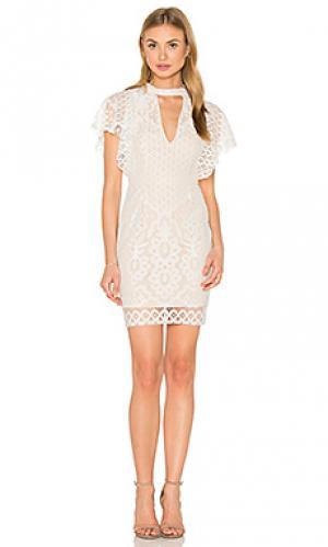 Кружевное платье adriana RISE OF DAWN. Цвет: белый