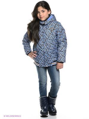 Куртка PELICAN. Цвет: голубой, черный, коричневый