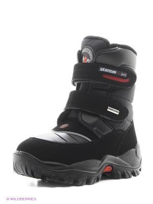 Ботинки Skandia. Цвет: черный