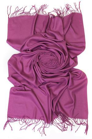 Палантин Frantelli. Цвет: пурпурный