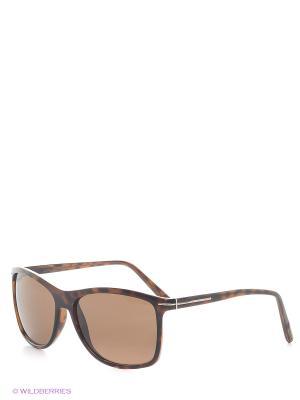 Солнцезащитные очки B 263 C2 Borsalino. Цвет: коричневый