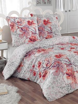 Комплект постельного белья Катрина Тет-а-Тет. Цвет: бледно-розовый, серый, молочный