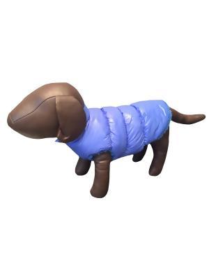 Жилетка Pet's Fashion. Цвет: голубой