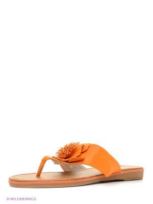 Сабо Vitacci. Цвет: оранжевый