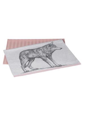 Кухонное полотенце в упаковке 50x70*2 WOLF HOBBY HOME COLLECTION. Цвет: сиреневый