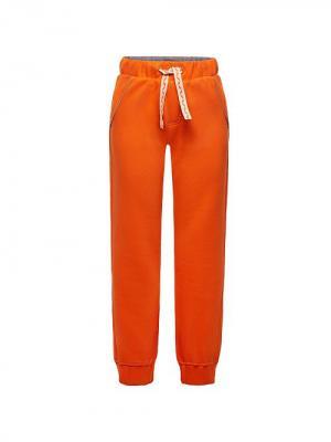 Брюки IFA30c011 Sailing Team Innamore. Цвет: оранжевый