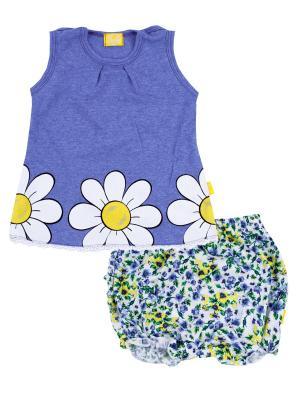 Кофточка, шорты, коллекция Летний луг Апрель. Цвет: голубой