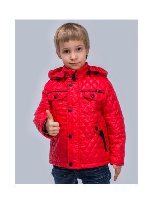 Куртка Пралеска. Цвет: красный