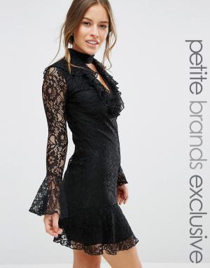 John Zack Petite Кружевное короткое приталенное платье с оборкой на кромке Pe. Цвет: черный