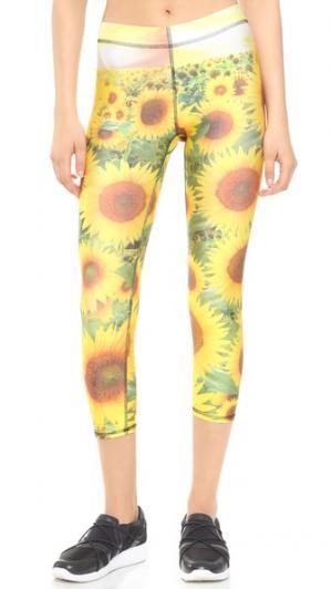 Спортивные леггинсы-капри Sunflower Terez. Цвет: мульти