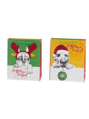 Пакет подарочный бумажный, 26х32х11см,4 штуки СНОУБУМ. Цвет: зеленый