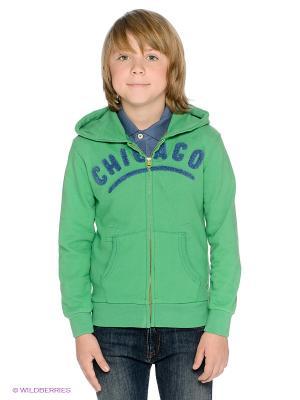 Толстовка American Outfitters. Цвет: зеленый