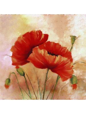 Декоративная шёлковая наволочка МАКИ 45х45 см Рапира. Цвет: бежевый, красный, зеленый