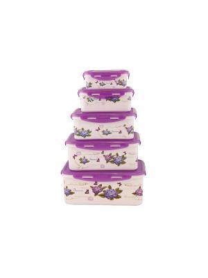 Набор контейнеров прямоугольных  Фиолетовый PATRICIA. Цвет: фиолетовый
