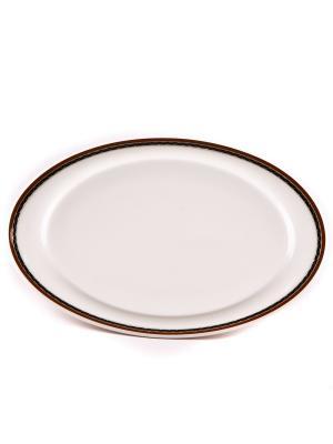 Блюдо овальное 20*36 см Кассие Royal Porcelain. Цвет: белый