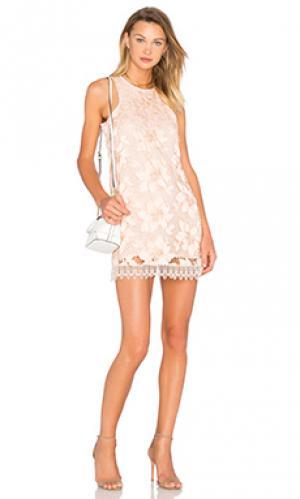 Платье-футляр caspian Lovers + Friends. Цвет: peach