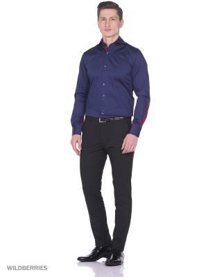 Рубашка Alex DANDY. Цвет: синий, бордовый