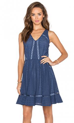 Платье с кружевными люсерсами sammy Greylin. Цвет: синий