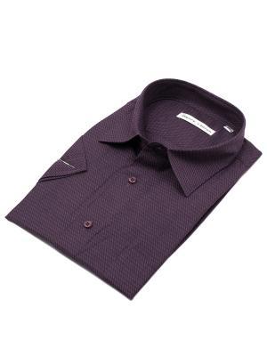 Рубашка Pierre Lauren. Цвет: фиолетовый