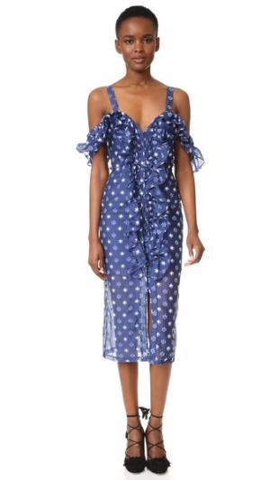 Платье Light Garden Alice McCall. Цвет: голубика маргаритка
