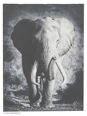 Art Холст Благородный слон DECORETTO. Цвет: черный, серый