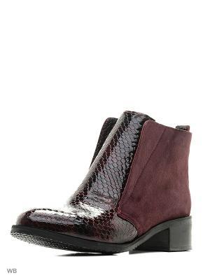 Ботинки ESTELLA. Цвет: темно-бордовый