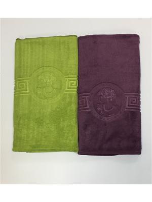 Полотенца кухонные A and C Collection. Цвет: зеленый, фиолетовый