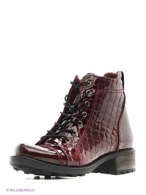 Ботинки Atiker. Цвет: темно-бордовый