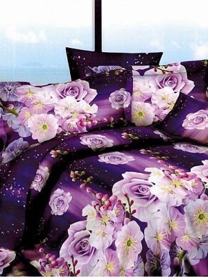 Постельное белье Микрофибра 7D ЕВРО Фентази МарТекс. Цвет: фиолетовый