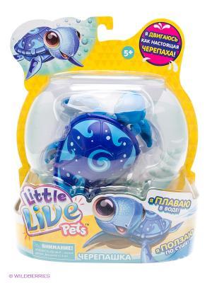 Интерактивная черепашка Moose Little Live Pets Wave, синяя. Цвет: синий