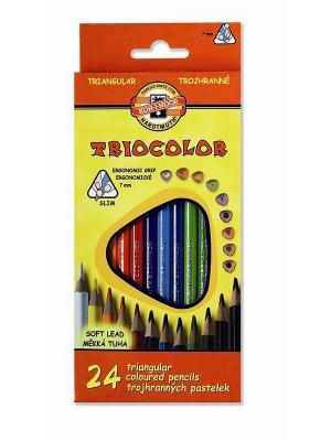 Набор карандашей цветных TRIOCOLOR трехгранных (24 цвета) Koh-i-Noor. Цвет: красный