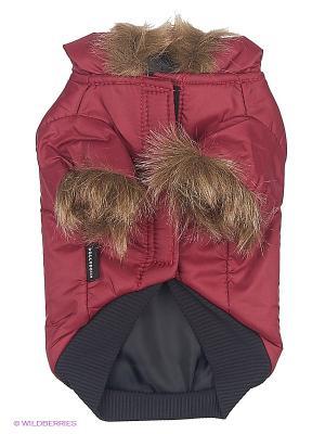 Куртка Doggy Dolly. Цвет: красный