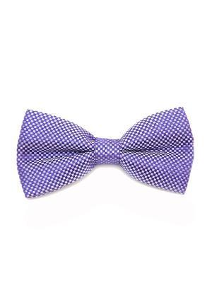 Галстук-бабочка Churchill accessories. Цвет: фиолетовый, белый, сиреневый, сливовый, темно-фиолетовый